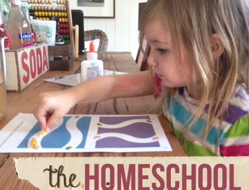 Why I Homeschool (ramblings from a former skeptic)