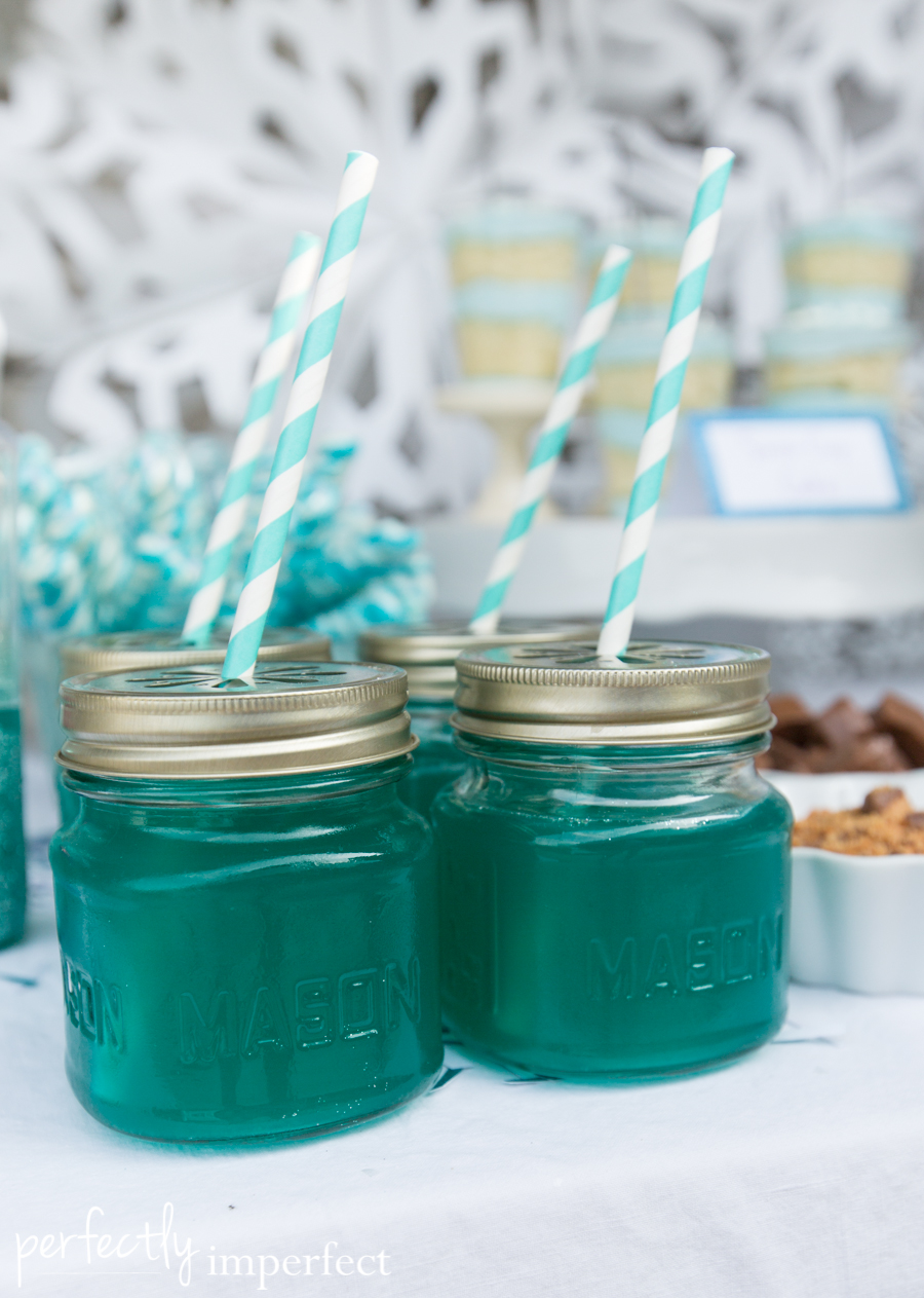 Perfectly Imperfect Simple Frozen Birthday Party-10