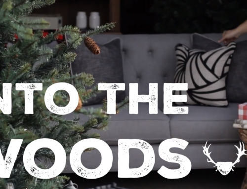 Into the Woods Video: Behind the Holiday Look Book