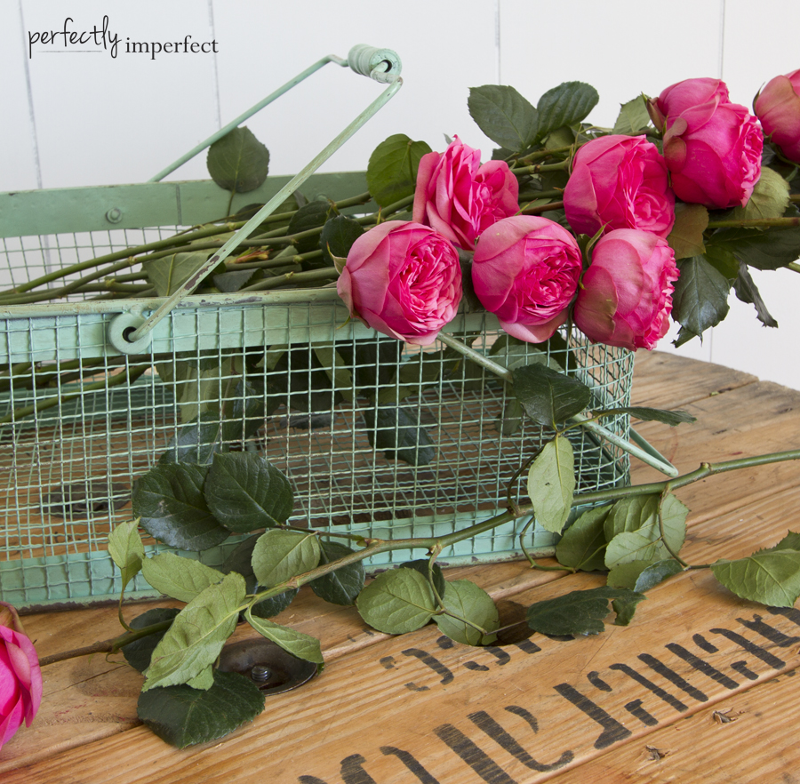 Old Green Paint Basket